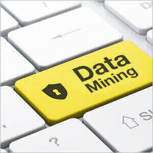 Data mining services