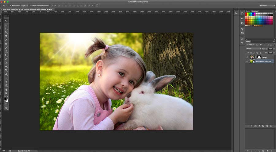 add new background to photo in Photoshop